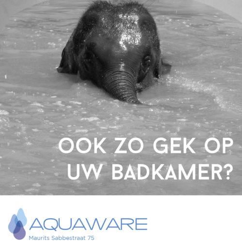 Aquaware-Schrauwen-memorial